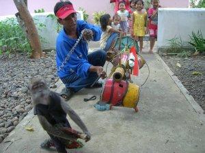 Topeng Monyet di Kampung
